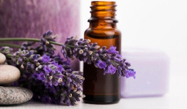 Lavender Essential OilFor Cold