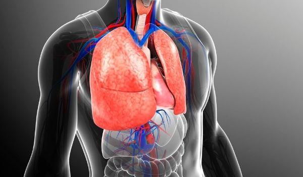 Good For Respiratory Health